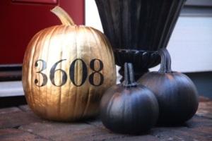 3608Pumpkin